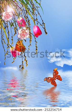 Willow, carnations and tulips on a background of blue sky