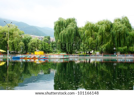 Willow trees at the lake in Vanadzor city, Armenia.