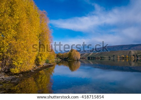 Willows in autumn foliage at lake Dunstan, New Zealand