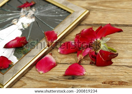 wilted rose and broken wedding picture - stock photo