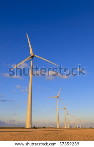 Wind energy turbines in summer with a blue sky
