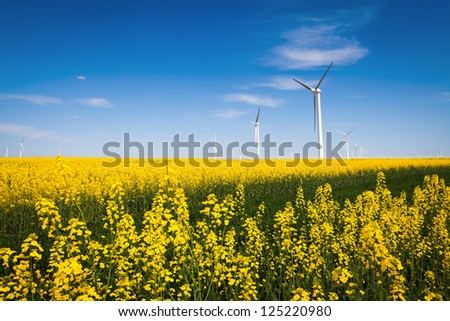 wind farm and beautiful rapeseed flower in bloom with a clear sky - stock photo