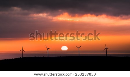 Wind Farm in front of setting sun