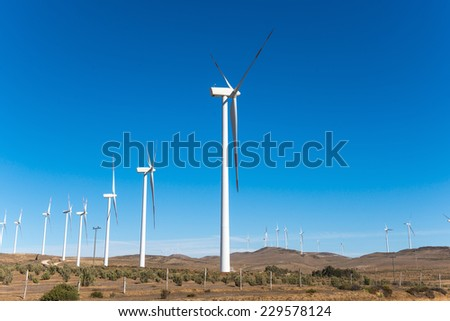 Wind farm in the north of Chile providing green ecological energy - stock photo