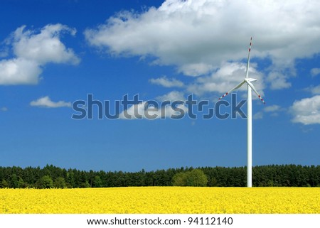 Wind farm on the colza field