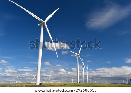 wind farm turbines white contrast green grass and blue sky, washington state, united states