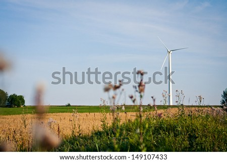 Wind generator in oat field