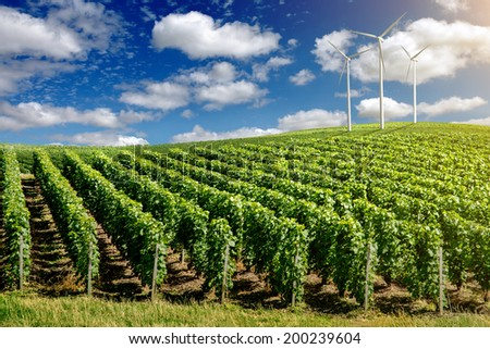 Wind generators turbines on summer landscape under blue sky - stock photo