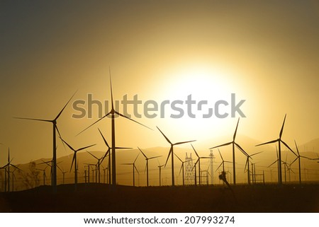 wind mill farm in california desert