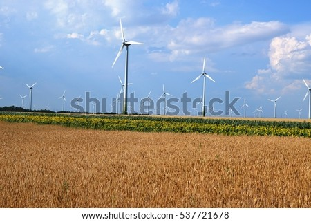 wind park behind the wheat and sunflower field
