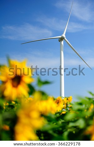Wind power station in sunflowers field in China. - stock photo