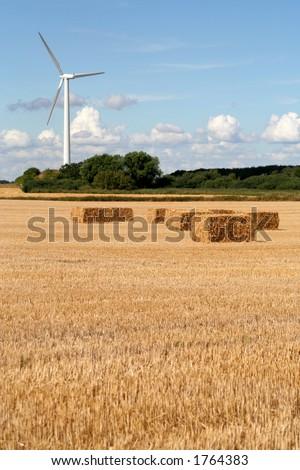 Wind Turbine and Wheat Field, Denmark - stock photo