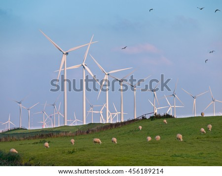 Wind Turbine Farms can make many Casualties during Bird Migration - stock photo