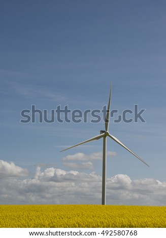 Wind turbine in a field of rape