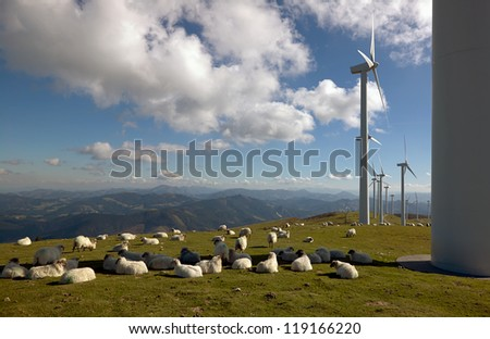 wind turbines and sheep - stock photo