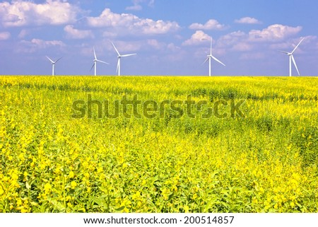 wind turbines in a flower field eco power concept