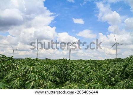 wind turbines in cassava farm - stock photo