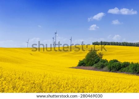 Wind turbines on the beautiful meadow  - stock photo