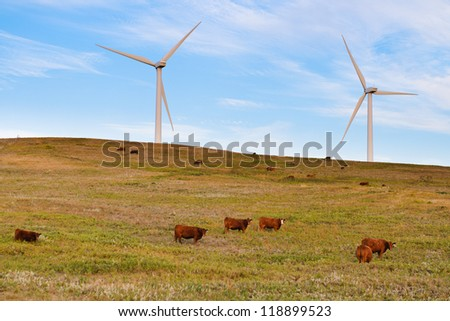 Wind turbines over grazing cattle in the prairies of Southern Alberta Canada