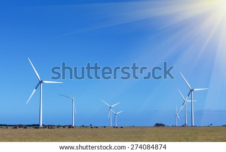 Windfarm (group of windmills) - Clean Energy production, Victoria, Australia