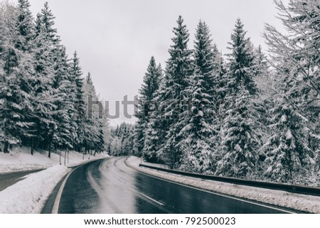 Windig road. Winter road through forest. Snow covered trees.