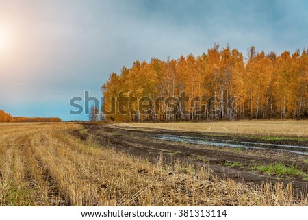 winding country road in rural area in fall