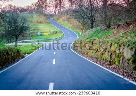 Winding country road through a forest landscape - stock photo