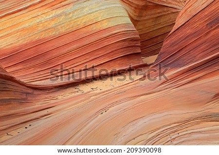 Winding desert canyon in Coyote Butte, Utah, USA. - stock photo