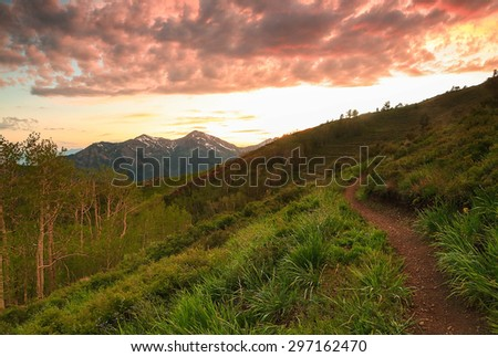 Winding dirt trail in the Wasatch Mountains, Utah, USA. - stock photo