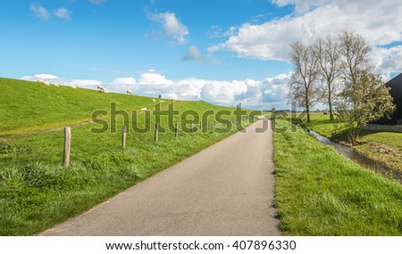 Winding narrow country road along a dike in the Netherlands. It's a sunny day at the beginning of spring and on the slope of the the embankment are grazing sheep with their lambs. - stock photo
