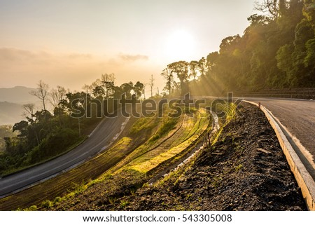 Winding Paved Road and Sunlight through the trees in the mountain.