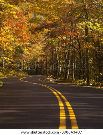 Winding road at autumn