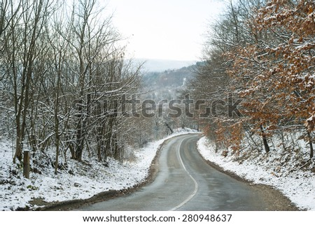winding road in woods at winter