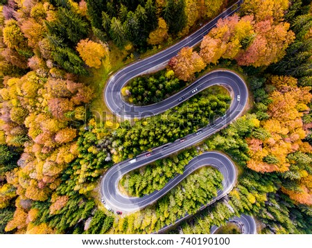 Winding Road surrounded by a colourfull trees in the forest
