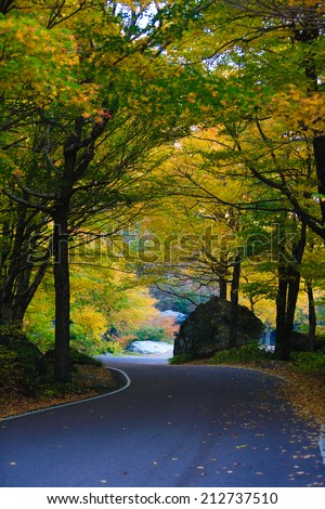 Winding road through autumn trees, Stowe Vermont, USA - stock photo