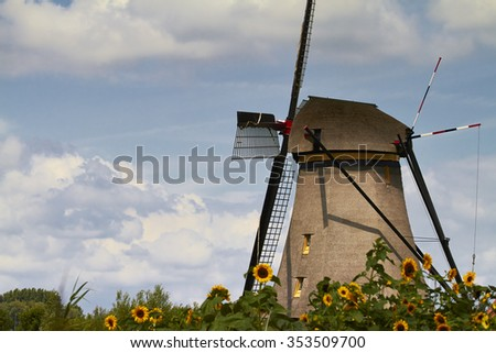Windmill among sunflowers in Kinderdijk