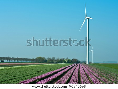 Windmill and flowers under a blue sky, Holland, Europe - stock photo