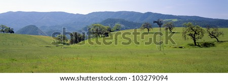 Windmill and oak trees in spring, Santa Ynez, California - stock photo