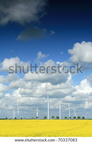 Windmill farm on the rapeseed field