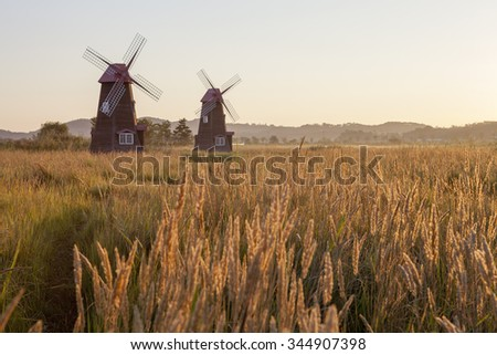 windmill in the morning