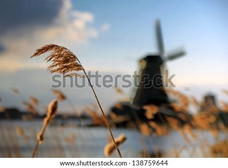 Windmills at Zaanstad, Netherlands. - stock photo