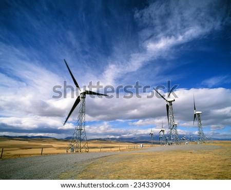 Windmills - electrical windmills farm industry by Cowley, Alberta CanadaCanada - stock photo