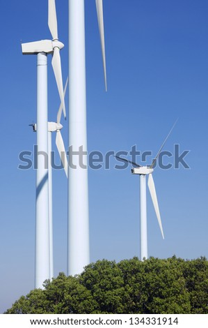 windmills for  electric power production and trees - stock photo