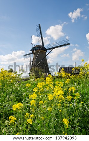 Windmills look out over the reedlands and canals in Kinderdijk in the Netherlands