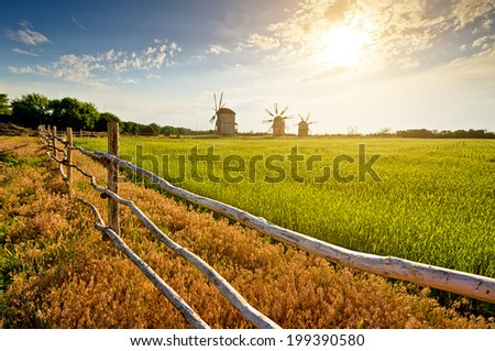 windmills on field at sunset. landscape