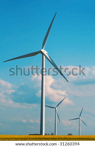 windmills on the meadow