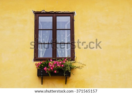 window and flower box