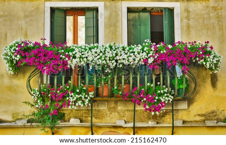 Window and flowers - stock photo