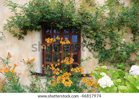 Window Background with flowers