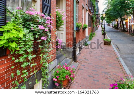 Window Box and Brownstones in Beacon Hill, Boston  - stock photo